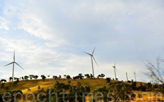 聯邦政府解除艾伯特禁止政府投資風電禁令