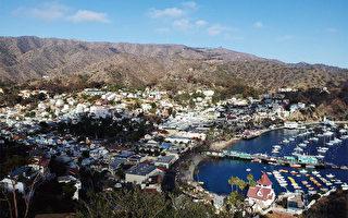 卡特琳娜岛——洛杉矶迷人梦幻海岛游