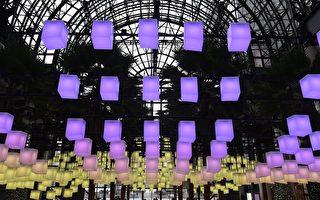美轮美奂的灯光秀 吸引纽约客