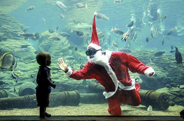 2015年12月22日,非洲最大的海洋主题公园-德班乌沙卡海洋世界,一个潜水员装扮成圣诞老人和一个孩子打招呼。乌沙卡海洋世界拥有超过200种海洋生物,圣诞节日期间会吸引大约18万游客来游玩。(RAJESH JANTILAL/AFP)