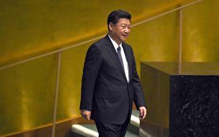 夏小强:习近平政治局会议酝酿重大政治行动