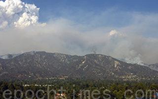加州6年累積1億多樹木死亡