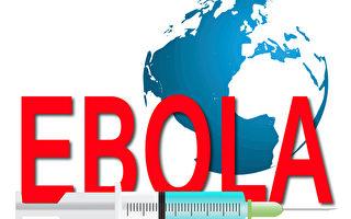 世衛宣布西非埃博拉疫情結束 仍有可能復發