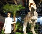 第三代美女机器人配上汉语发音,安排担任导览恐龙展。(黄玉燕/大纪元)