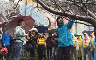 让新竹公园树木更美 日本树医师来台指导