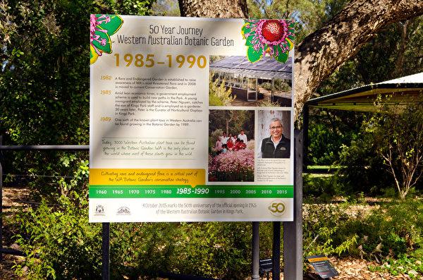 2015年澳洲西澳国王公园植物园开放50周年纪念,植物园在不同的主题展区树立展板,介绍从1965年起每个5年期间的重要发展,其中一块展板就是关于阮先生的。图为介绍阮先生的展板。(周鑫/大纪元)