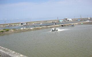 台漁會:預期心理恐波動養殖魚賣價