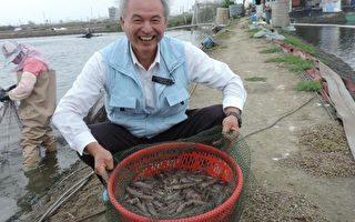 身兼中醫師的獸醫師 堅持零用藥養白蝦