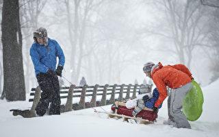 組圖:暴風雪襲擊紐約 中央公園不寂寞