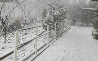 霸王寒流 桃園市中心至北橫沿線下雪 50年未見