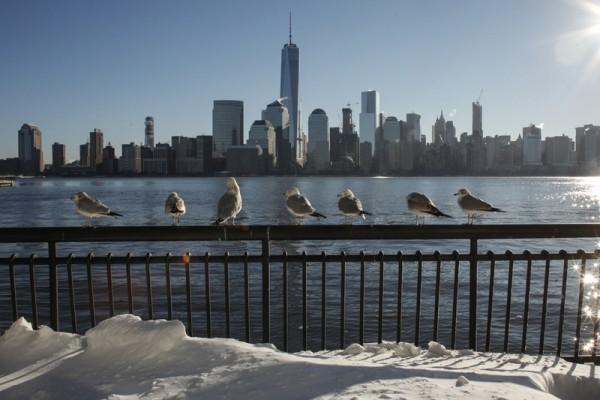 1月24日清晨,暴風雪過後的紐約寧靜美麗。(KENA BETANCUR/AFP/Getty Images)