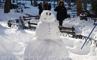 大雪后 华埠哥伦布公园成游乐场