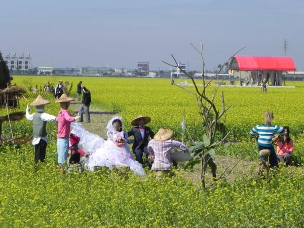 太保市田尾社區在黃澄澄的油菜花海中,以稻草為主題,做成農村娶新娘的造型裝置藝術很逗趣。(蔡上海/大紀元)