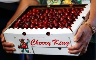 中国代购大军盯上澳洲新鲜食品