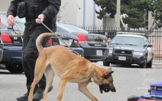 男子枪杀美俄州K9警犬 被判监禁45年