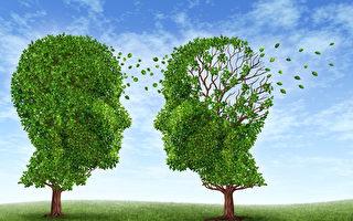 研究:從小學第二語言可防老年癡呆症