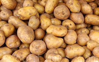 只吃馬鈴薯度日  澳洲男子甩肉17公斤