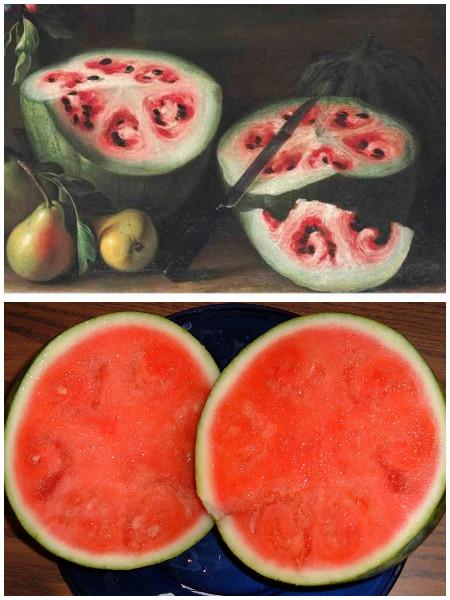 野生西瓜与人工种植西瓜。(Wikimedia Commons/大纪元合成)