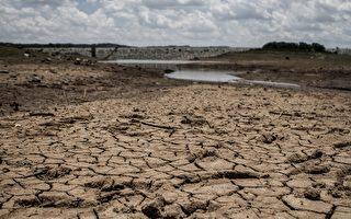 津巴布韋請求捐献 防止大規模飢荒