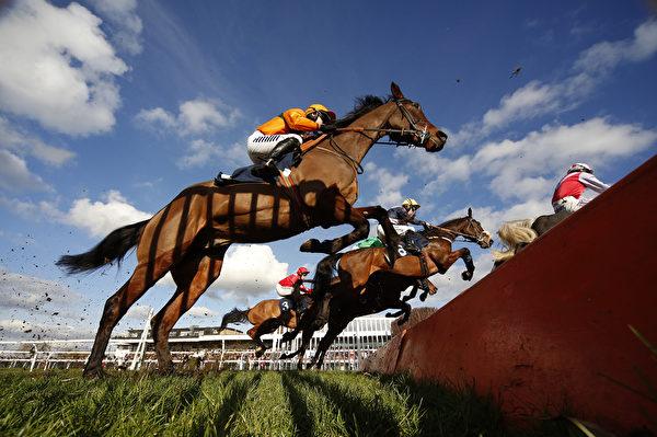 2016年2月11日,英国亨廷顿,亨廷登赛马上,Leighton Aspell骑战指挥官(中黄帽者)在32Red障碍赛中克服了矮墙、水沟和栅栏,奔向胜利的精彩瞬间。(Alan Crowhurst/Getty Images)