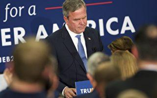 美南卡初选后 杰布‧布什宣布退出总统竞选