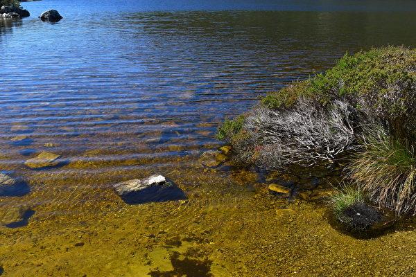 多芬湖的水,甘甜、清澈。(華苜/大紀元)