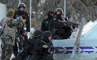 突尼斯边界遭袭击 至少50死