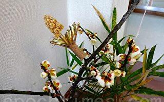 吉利日本銘菓「粟穗稗穗」究天然好食材