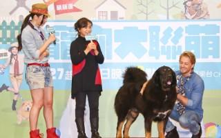 宠物沟通师杜莉德(左二)解读宠物的心声。左为主持人邵庭,右为法比欧。(中天提供)