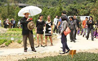 9國駐台使節團遊綠博 體驗製作蔥油餅