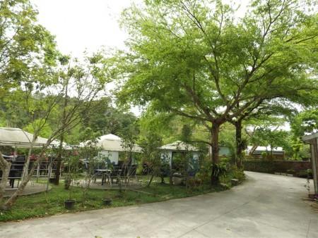谷泉咖啡庄园内林木苍苍,还种植三千棵的咖啡树,除了提供自产自销的咖啡,还有简餐,是休闲的好地方。(廖素贞/大纪元)