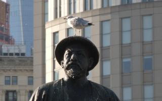 纽约华埠鸟粪鼠患 影响刘锦广场美观