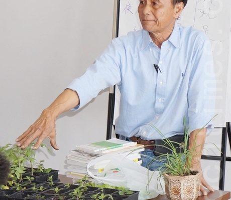有機蔬果自家種植豐富健康生活
