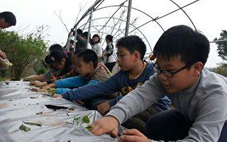 雙瓜綠色隧道 龍昇國小學習之旅