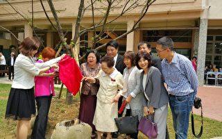 十年树木百年树人   竹女百岁杰出校友赠樱树