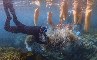 小琉球海洋志工隊 讓珊瑚重見天日