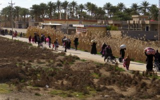 IS围城居民命危 人权组织吁伊军队护送物资