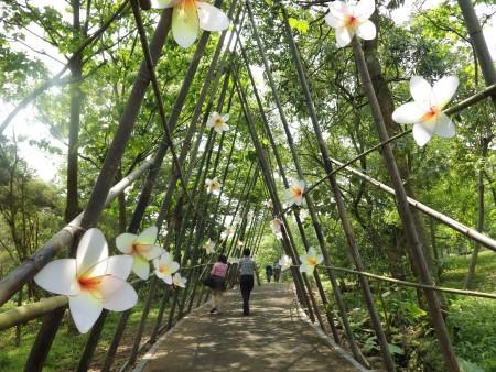 今年桐花开得较晚,园区里大部分的桐花还含苞待放,当地居民表示只要到周末就会盛开。因此游客不必失望。(廖素贞/大纪元)