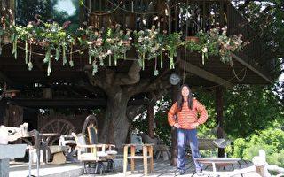 台湾移民在美国筑树屋