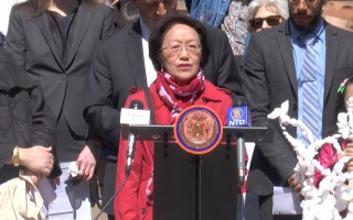 紐約多位市議員再次力推塑料袋收費法案