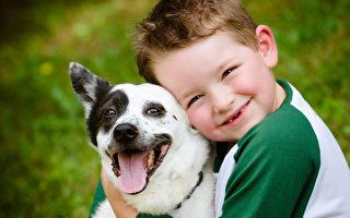 研究:小狗討厭被擁抱 十之八九苦瓜臉