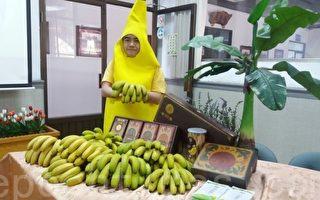 赴日參展成功 集集山蕉走向國際
