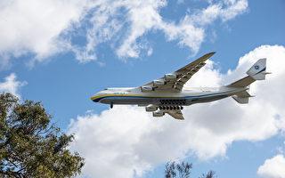 世界上最大的飛機Antonov An-225 Mriya降落在珀斯。(林文責/大紀元)