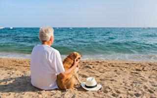 研究:养狗会使主人心率降低 有益健康