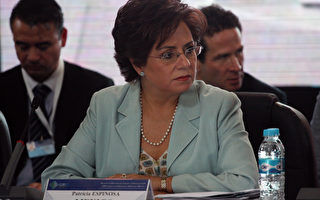 前墨西哥外长将任UN气候变化公约执行秘书