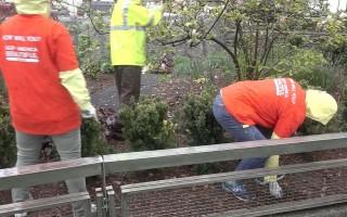 纽约垃圾袋收费 环保组织支持