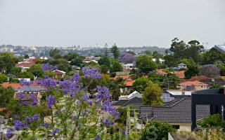 西澳首次置业者较东部活跃 有助房市复苏