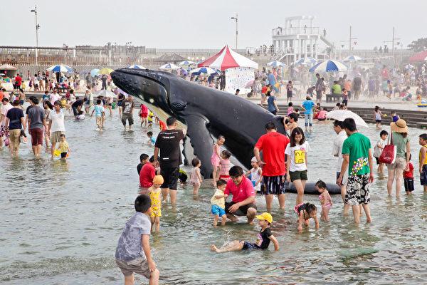 夏日消暑 东石渔人码头鲸鱼池提早开放