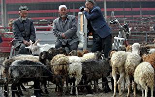 报告:超过100名中国穆斯林加入IS