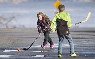 安省厅长呼吁多市解除街道玩冰球禁令